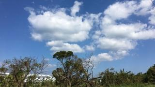 2019年9月9日台風15号-少しずつ復興編