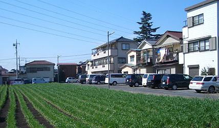 20060303c.jpg