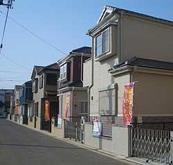 20060316a.jpg