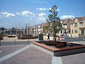 20060317a.jpg