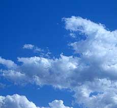 20060320c.jpg