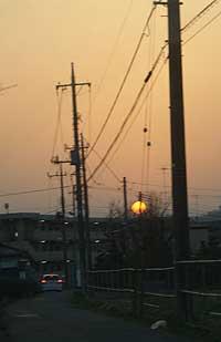 20060321b.jpg