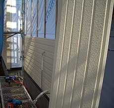 20060324c.jpg
