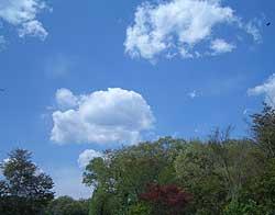 20060421a.jpg