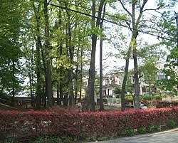 20060430a.jpg