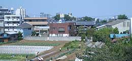 20060504b.jpg