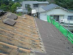 20060601b.jpg