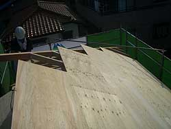 20060803a.jpg