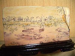 20061215c.jpg