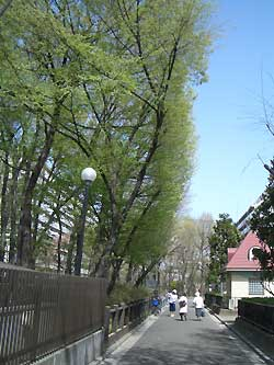 20070405e.jpg