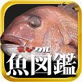 デジタル魚図鑑1000.jpg