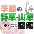 季節の野草・山草図鑑.jpg